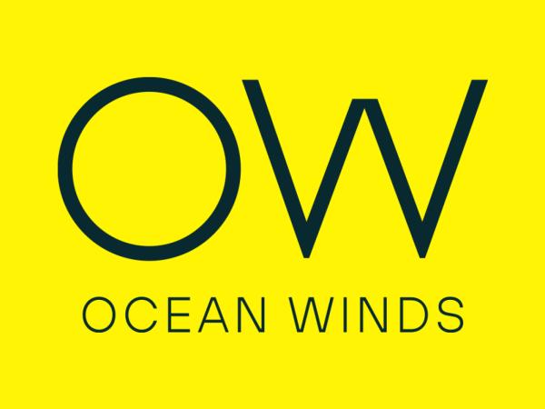 Ocean Winds quer ser líder global em eólica no mar